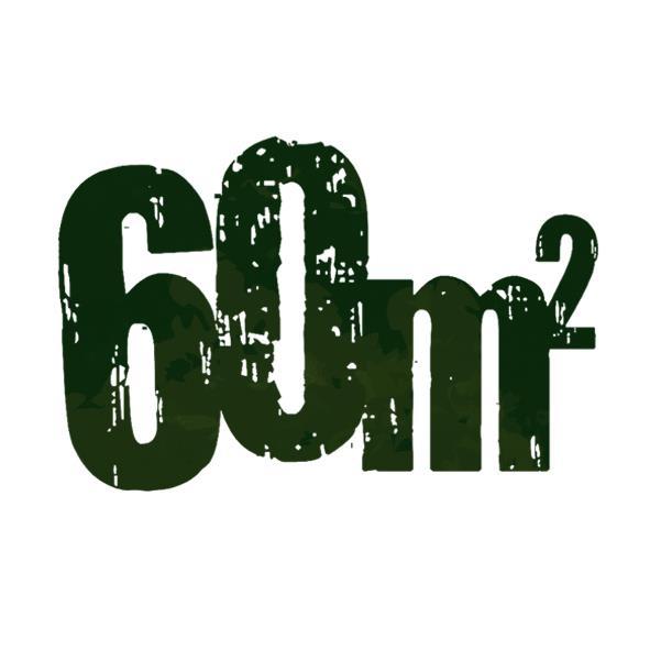 60 m2
