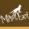 Masal Evi logo